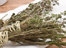 herbs you can burn for incense