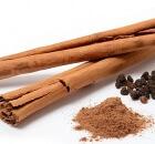 cinnamon bark essential oil healing properties