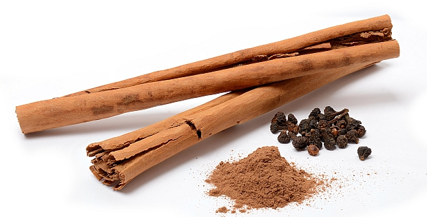cinnamon bark essential oil healing properties